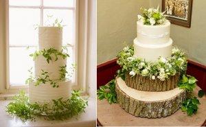 کیک سازگار با طبیعت