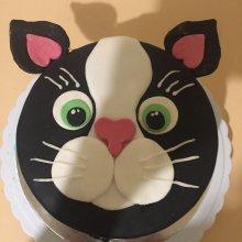 کیک تولد طرح گربه